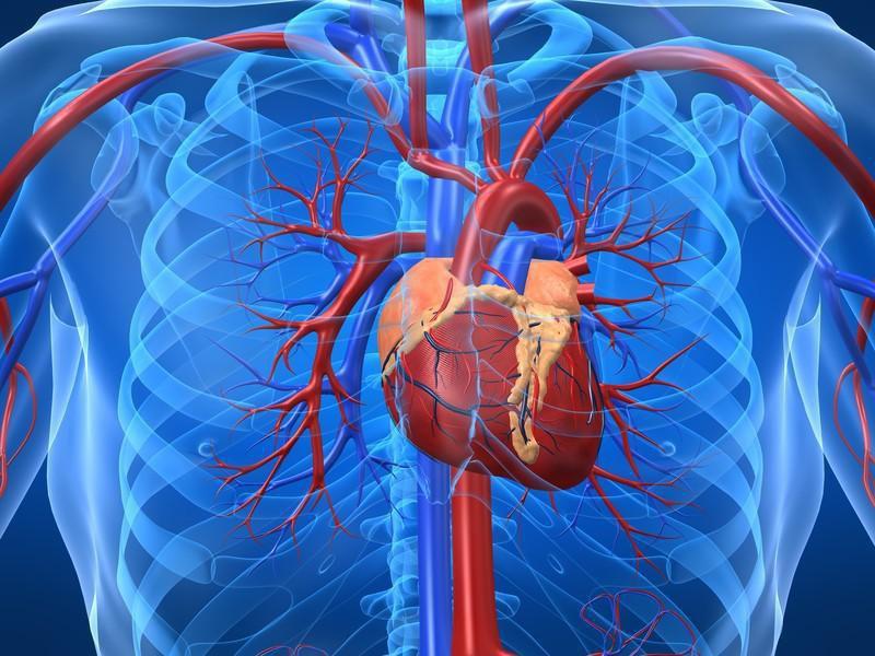 ما هي جراحه القلب المفتوح ؟